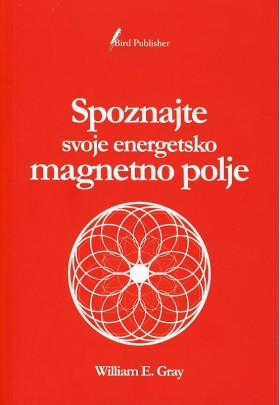 Spoznajte svoje energetsko magnetno polje