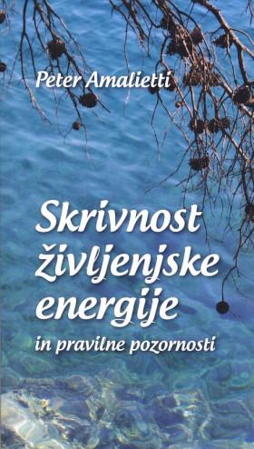 Skrivnost življenjske energije in pravilne energije