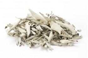 Kadilo beli žajbelj v lističih
