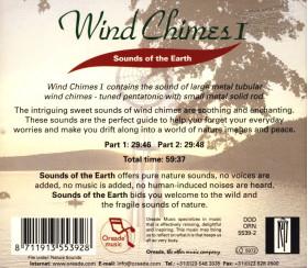CD Wind Chimes I