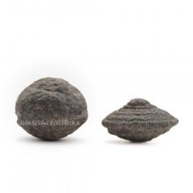 Šamanska Moqui kamna - Moqui Marble - par